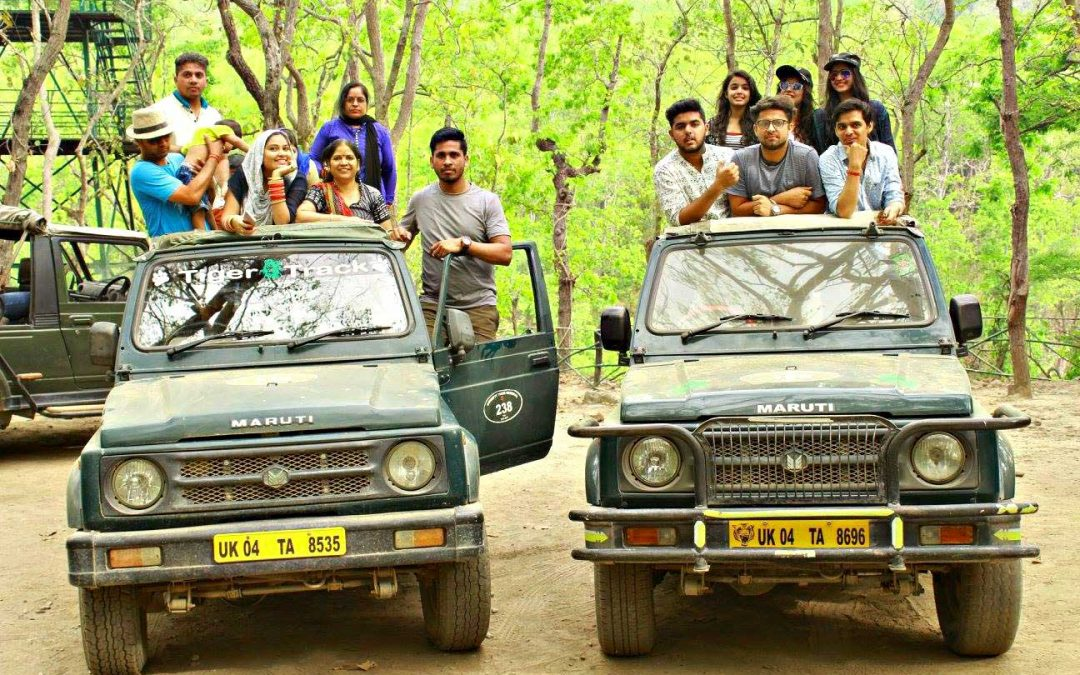 Jungle Safari at Jim Corbett National Park.
